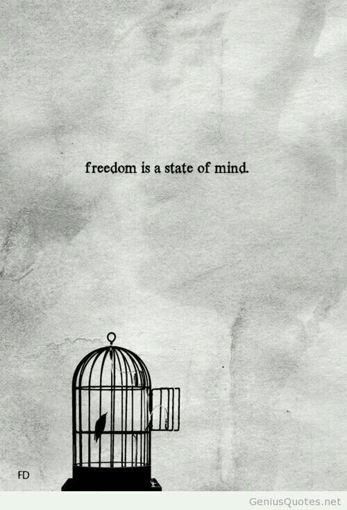 Pin by Alaa Jafar on random (With images) Freedom quotes
