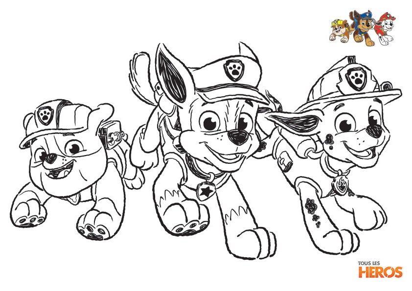coloriage_paw-patrol5.jpg 842×595 pixels