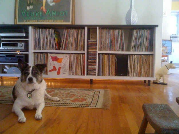 Your record collection is the focus of your home decor.