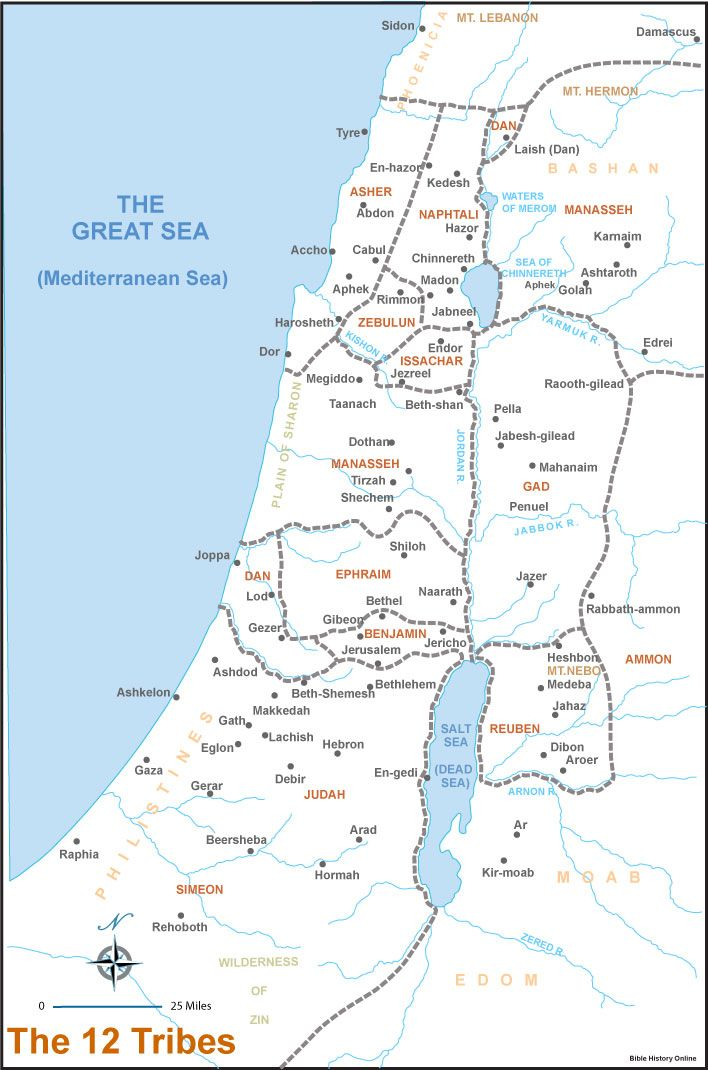 Map Of Canaan 12 Tribes The Twelve Tribes Your Ancestors Respected The Palestinians