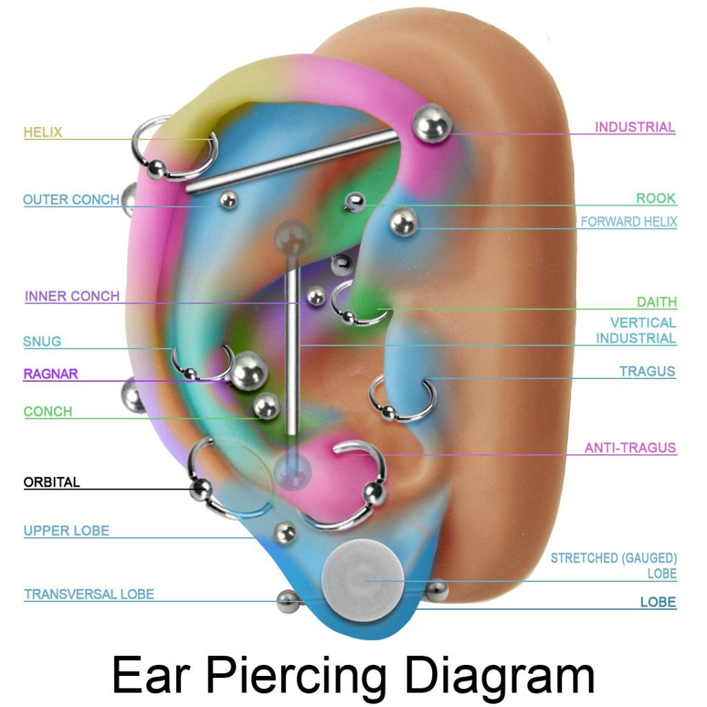 Ear Piercing Diagram Pain.Best Prices For Body And Facial Piercings In Stoke On Trent