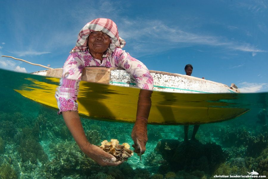An elderly Bajau sea gypsy woman sits on a boat cutting fresh clams out of their shells, while the younger members of her family swim around collecting them.
