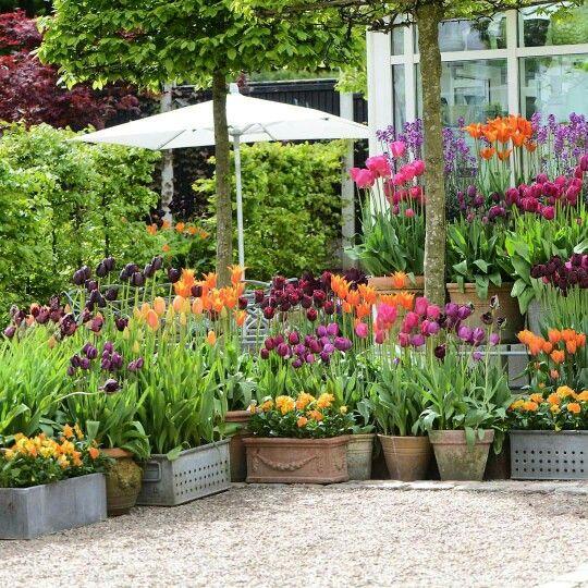 Garden · Beautiful Backyard. Spring GardenFlower ShopsGarden ...