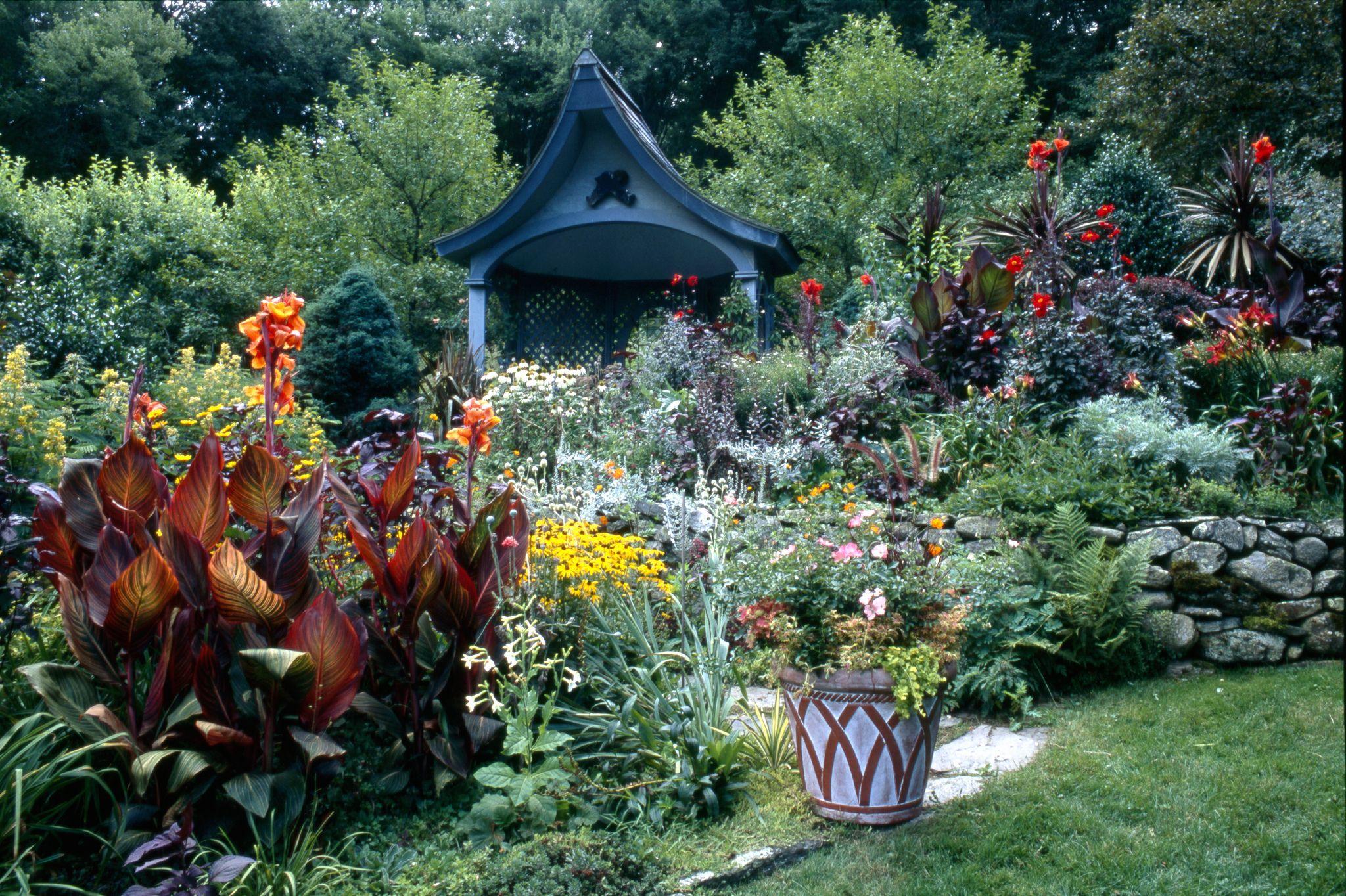 Landscape flower garden  Tropicanna cannas Flower Carpet roses Burgundy Spire in landscape