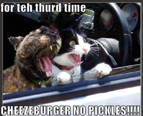 No pickles