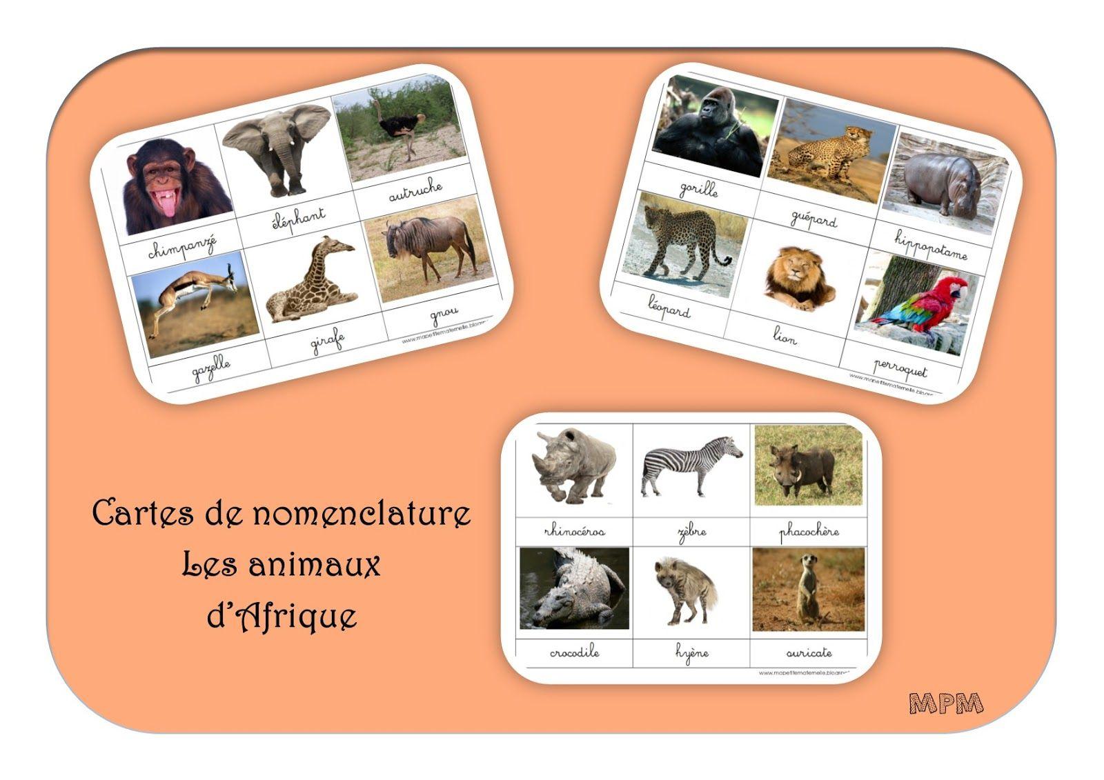 Cartes de nomenclature animaux d 39 afrique afrique en - Animaux afrique maternelle ...