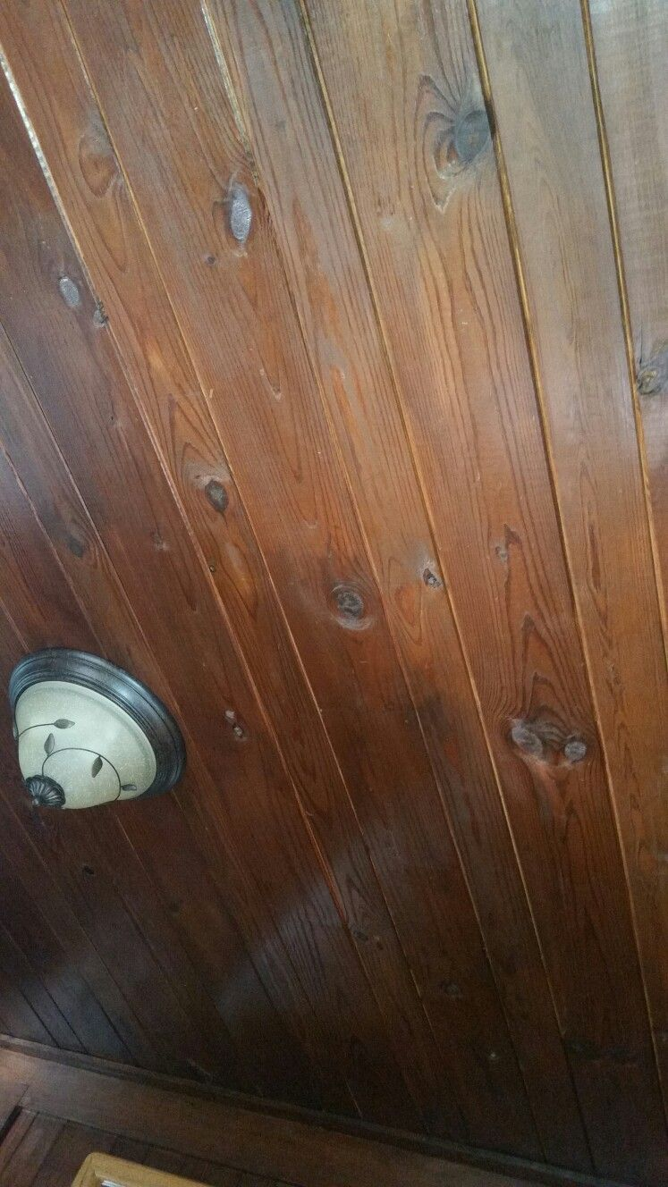 Beautiful wood ceilings at the Myrtle Beach State Park