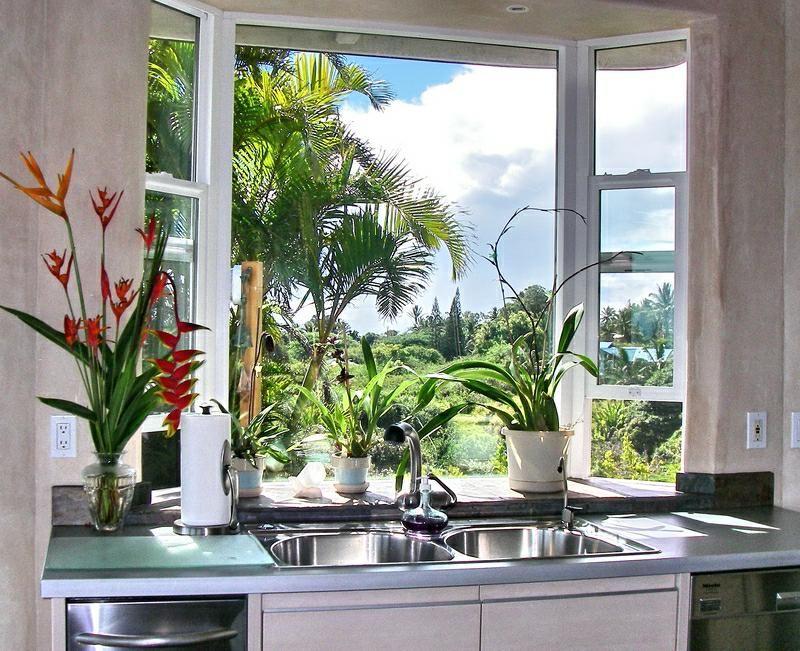 Garden Window Over Sink Kitchen Garden Window Garden Windows