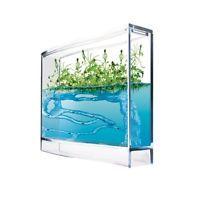 ameisen plantage mit gew chshaus samen ameisen aquarium. Black Bedroom Furniture Sets. Home Design Ideas