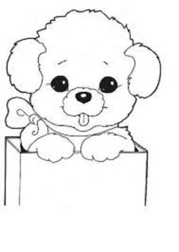 Dog Coloring Pages For Kids Preschool And Kindergarten Dog Coloring Page Preschool Coloring Pages Dolphin Coloring Pages [ 1064 x 756 Pixel ]
