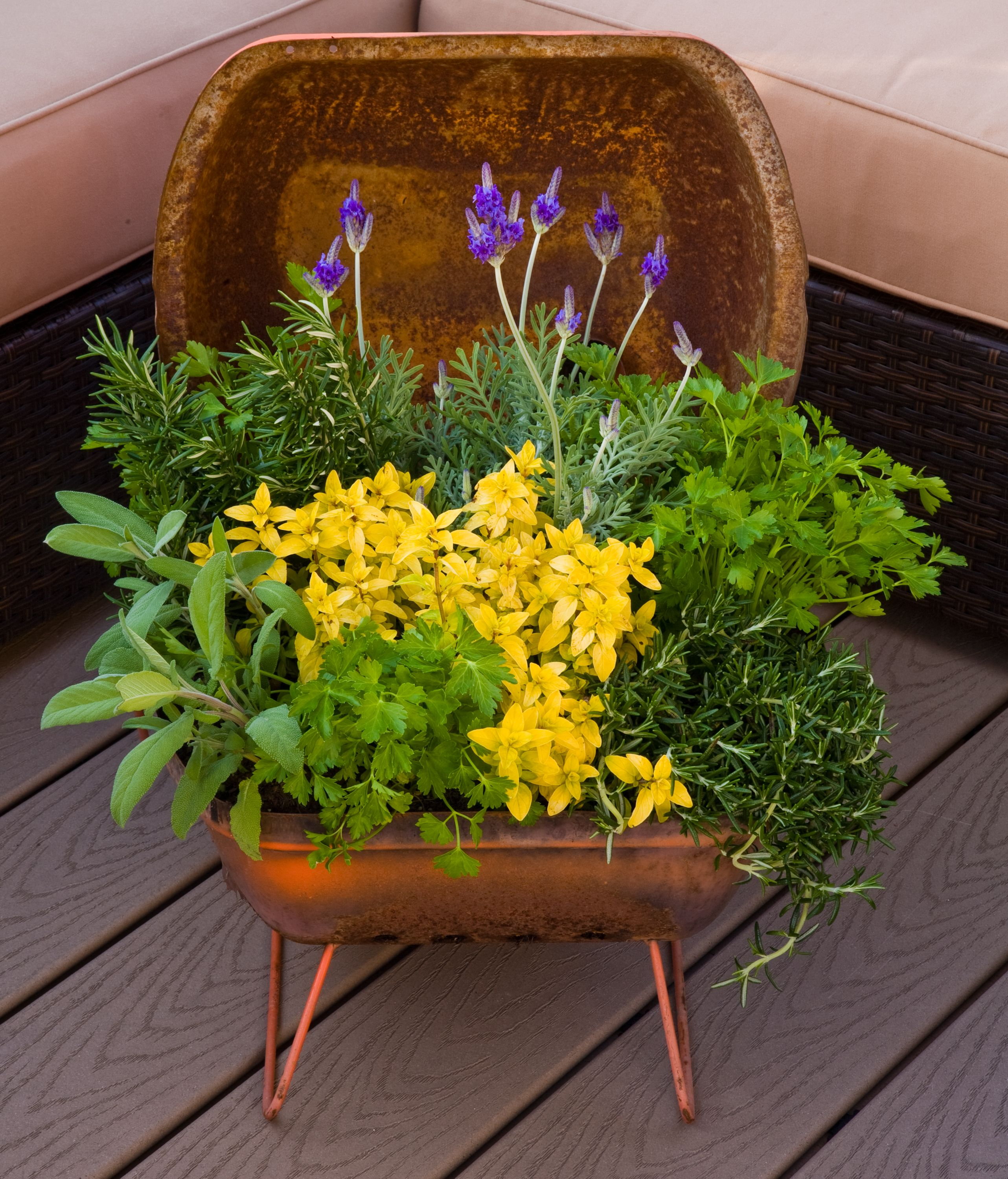 recycled portable table top grill to container herb garden