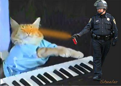 Gallery Backup Pepper Spraying Cop Becomes Internet Meme Memes Cat Spray Cop