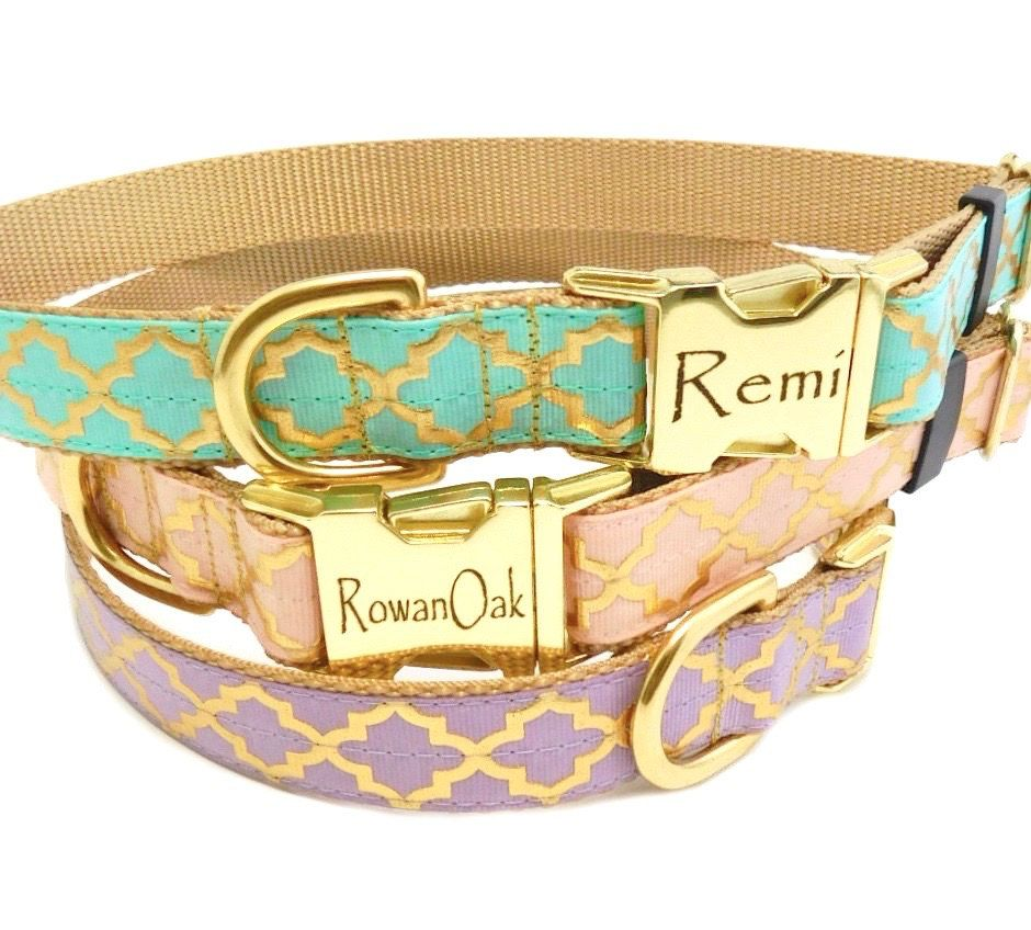 Personalized Dog Collar in Fancy Quatrefoil Print