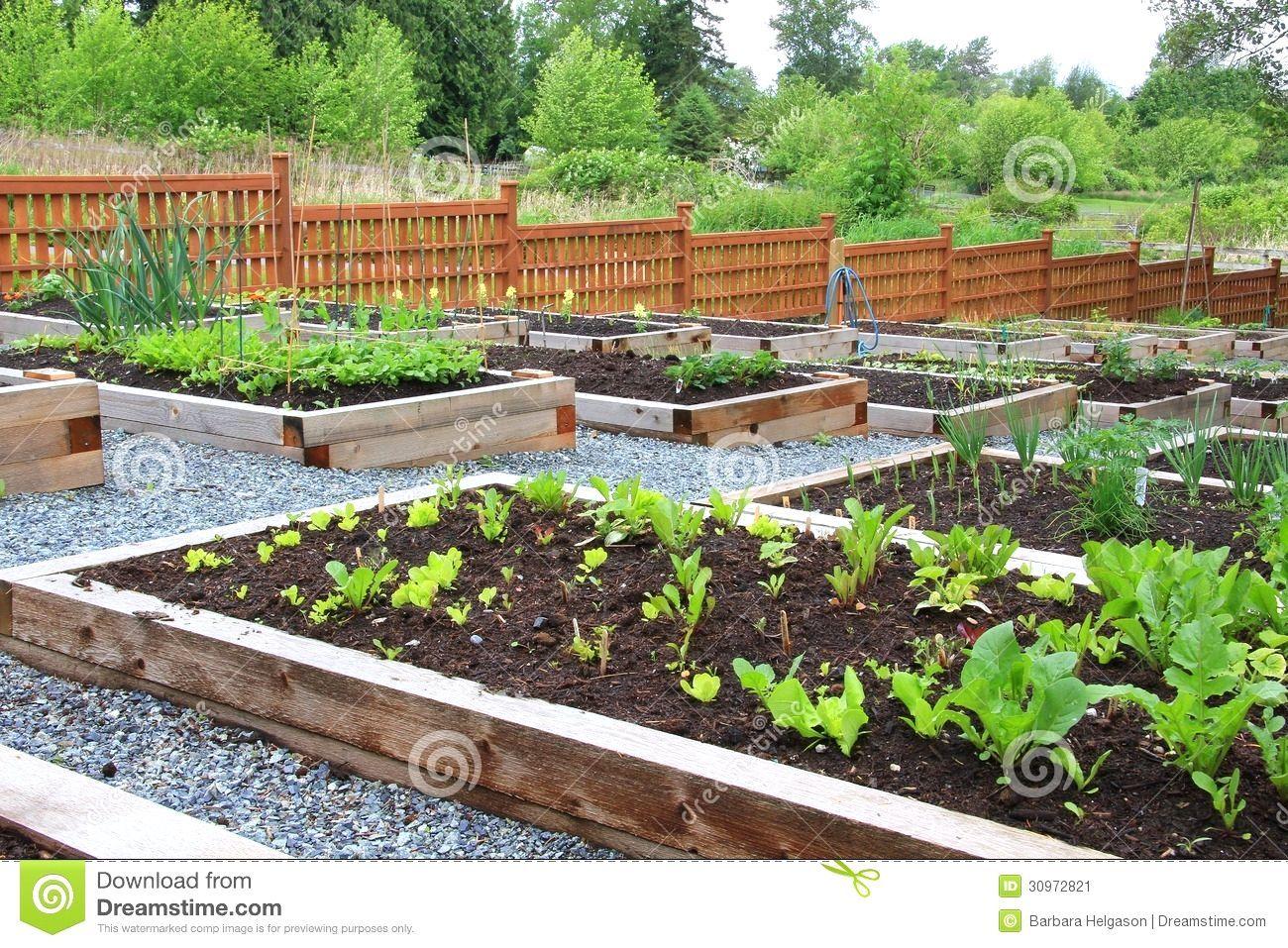 vegetable garden design on a hill garden design brisbane designerhomnet