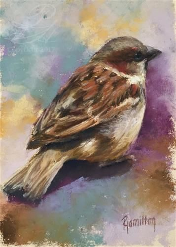 Daily Paintworks English Sparrow Original Fine Art For Sale