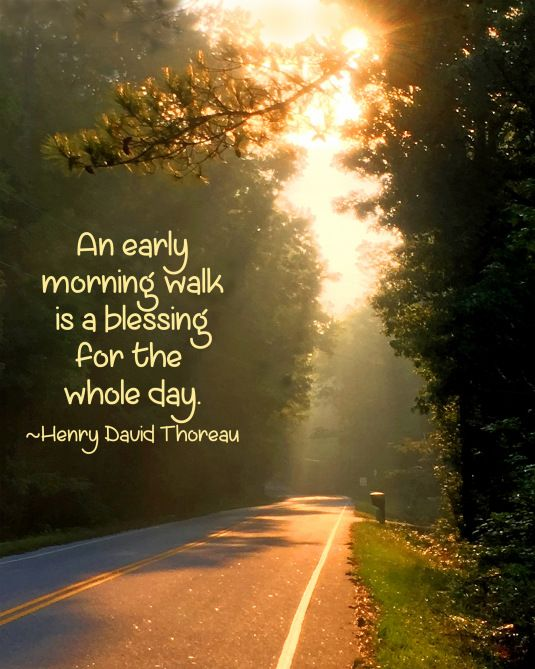 Morning Walk Henry David Thoreau Quote 420 Gratitude Thoreau
