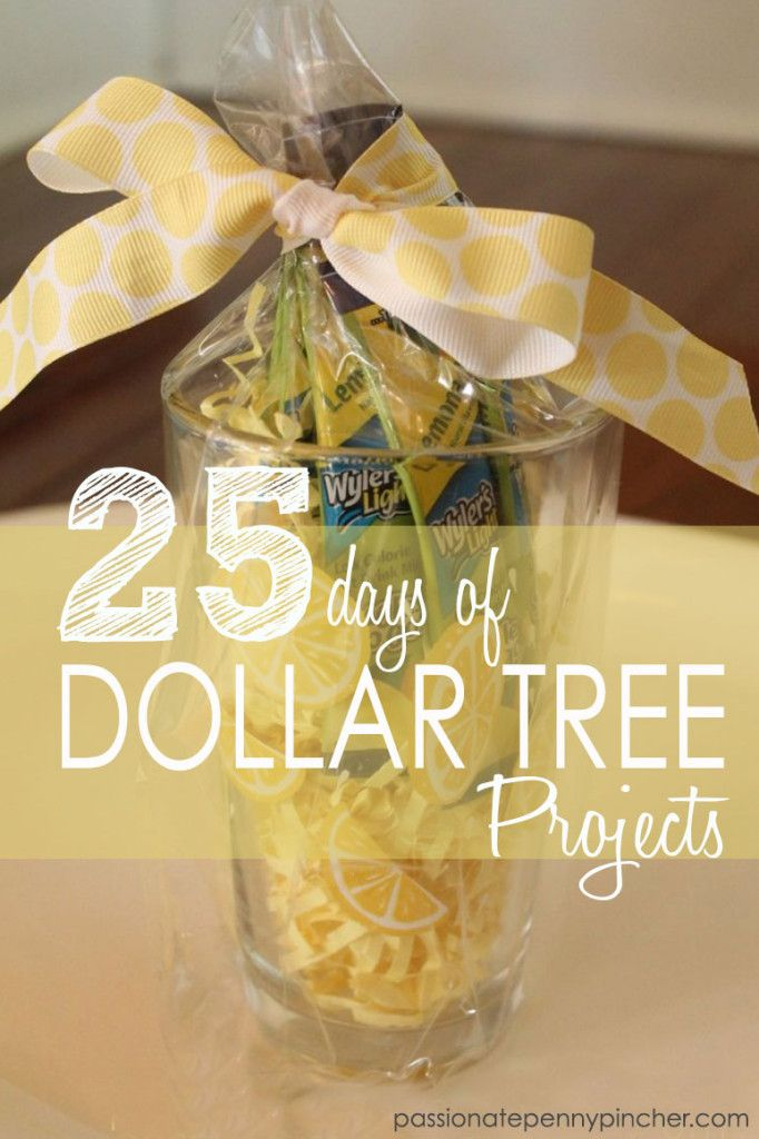 25 Dollar Gifts 25 days of dollar tree projects day 8: spice organizing at the