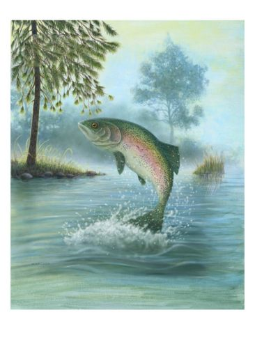 Rainbow Trout Jumping Premium Poster at Art.com | Terry's ...