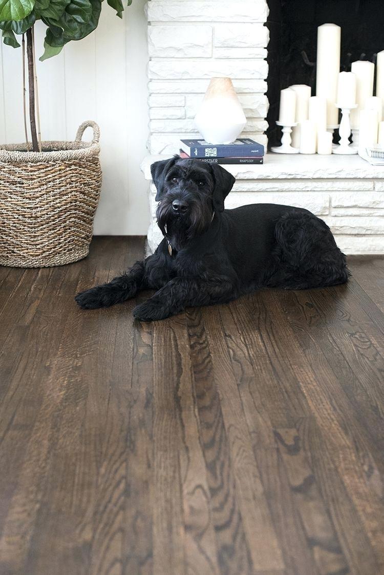Image result for hardwood floor colors hardwood floor colors