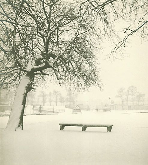 Marcel Bovis, Tuileries Gardens, Paris 1955