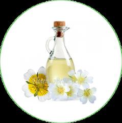 White Meadowfoam Seed Oil Benefits In Skincare Oil Benefits Meadowfoam Oil Seed Oil