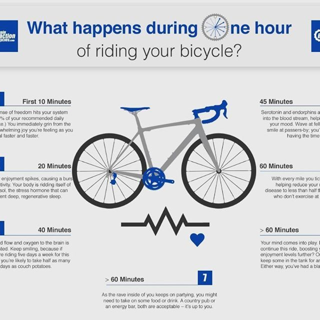 Do You Know What Happens To You During One Hour Of Cycling