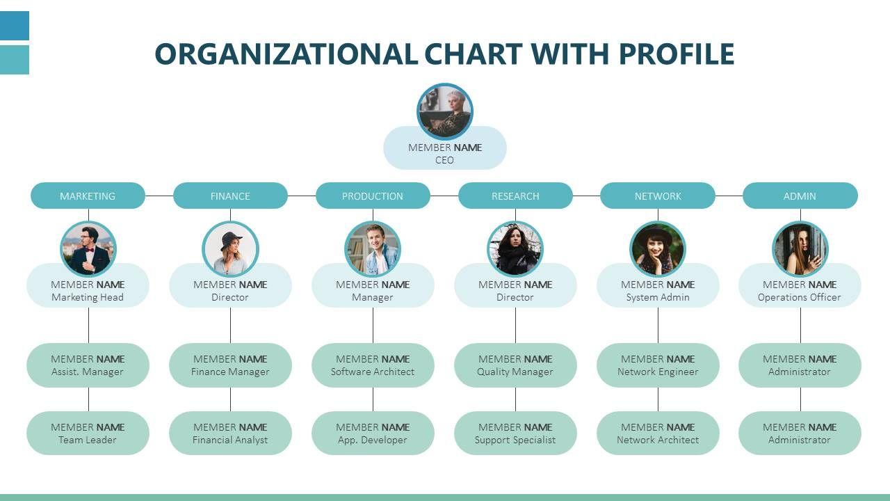 Organizational Chart With Profile Organizational Chart Design
