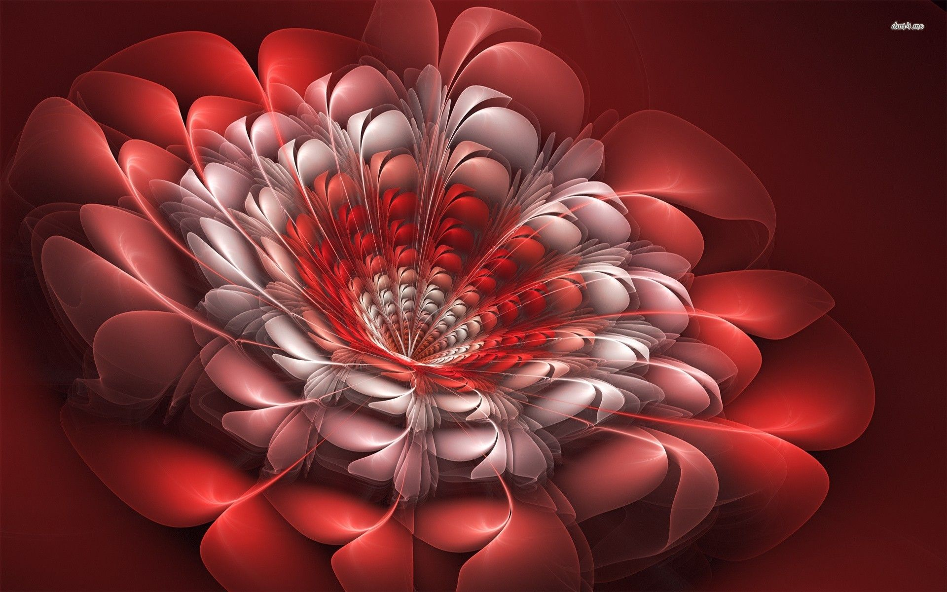 FLOWERS WALLPAPERS 3D FREE Wallpapers & Background images ...