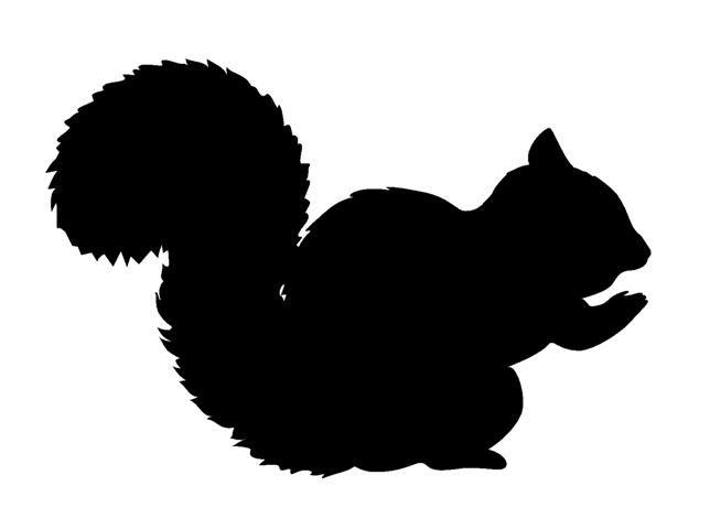 Squirrl Silhouettes Pinterest Silhouettes Squirrel