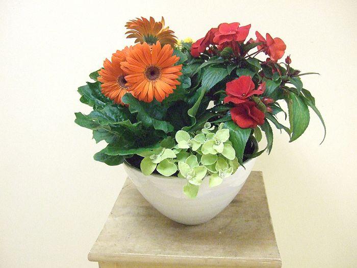 flower arrangement in the office