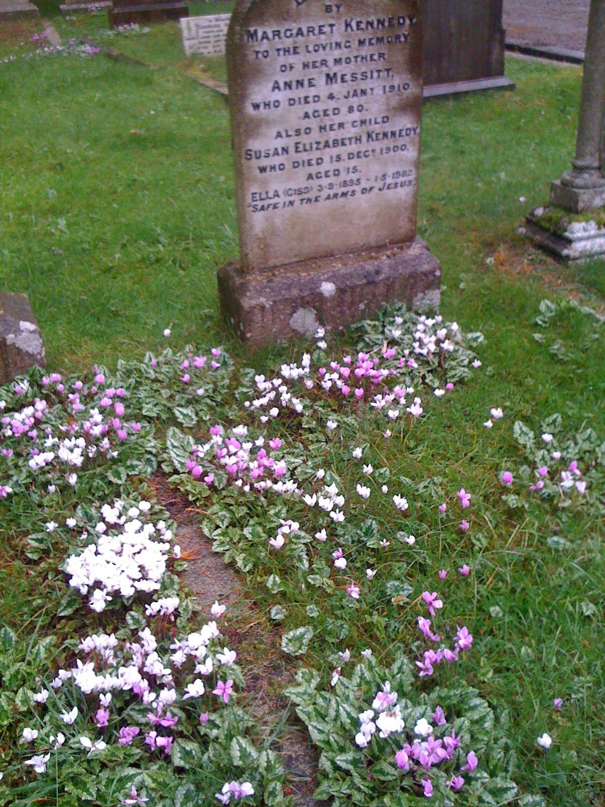Headstone, Enniskerry graveyard - 12/10/12