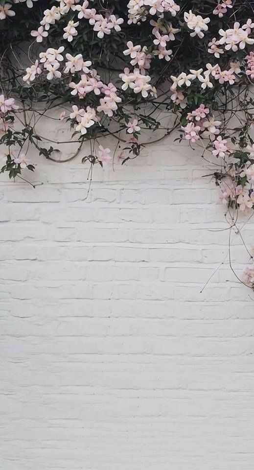 42 Classy Unique Wall Background You Must Have Pink Flowers Wallpaper Flower Aesthetic Flower Wallpaper