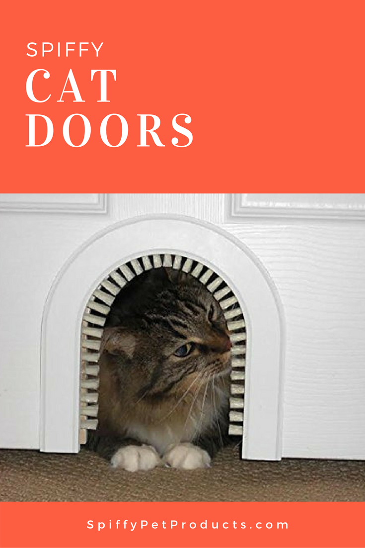 Cat Doors Accessories Cat Door Cat Room Cats