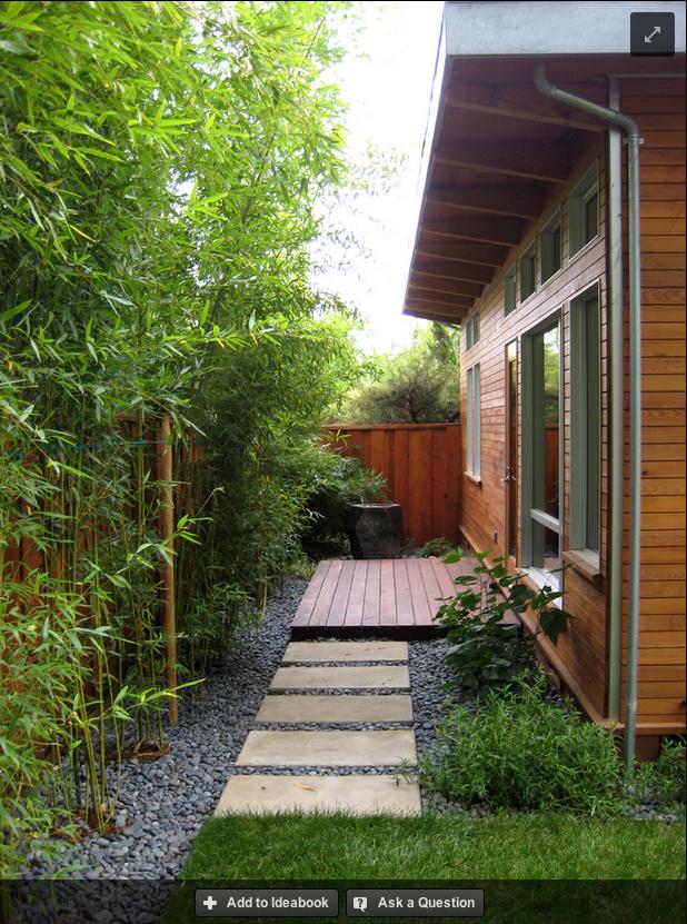 street side of house option greenery