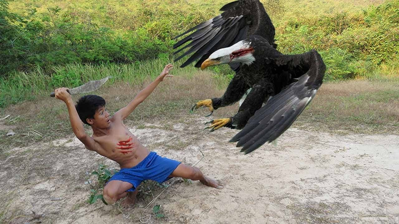 Eagle trap try at home at your ow risk i am not trying