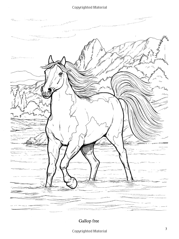 - Wonderful World Of Horses Coloring Book (Dover Nature Coloring Book): John  Green: 0800759444656: Amazo… Horse Coloring Pages, Horse Coloring Books, Horse  Coloring