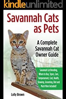 Savannah Cats as Pets Savannah Cat Breeding, Where to Buy