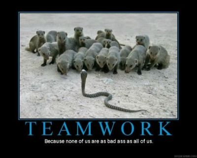 Funny Memes For A Bad Day : Teamwork funny friendship quotes teamwork