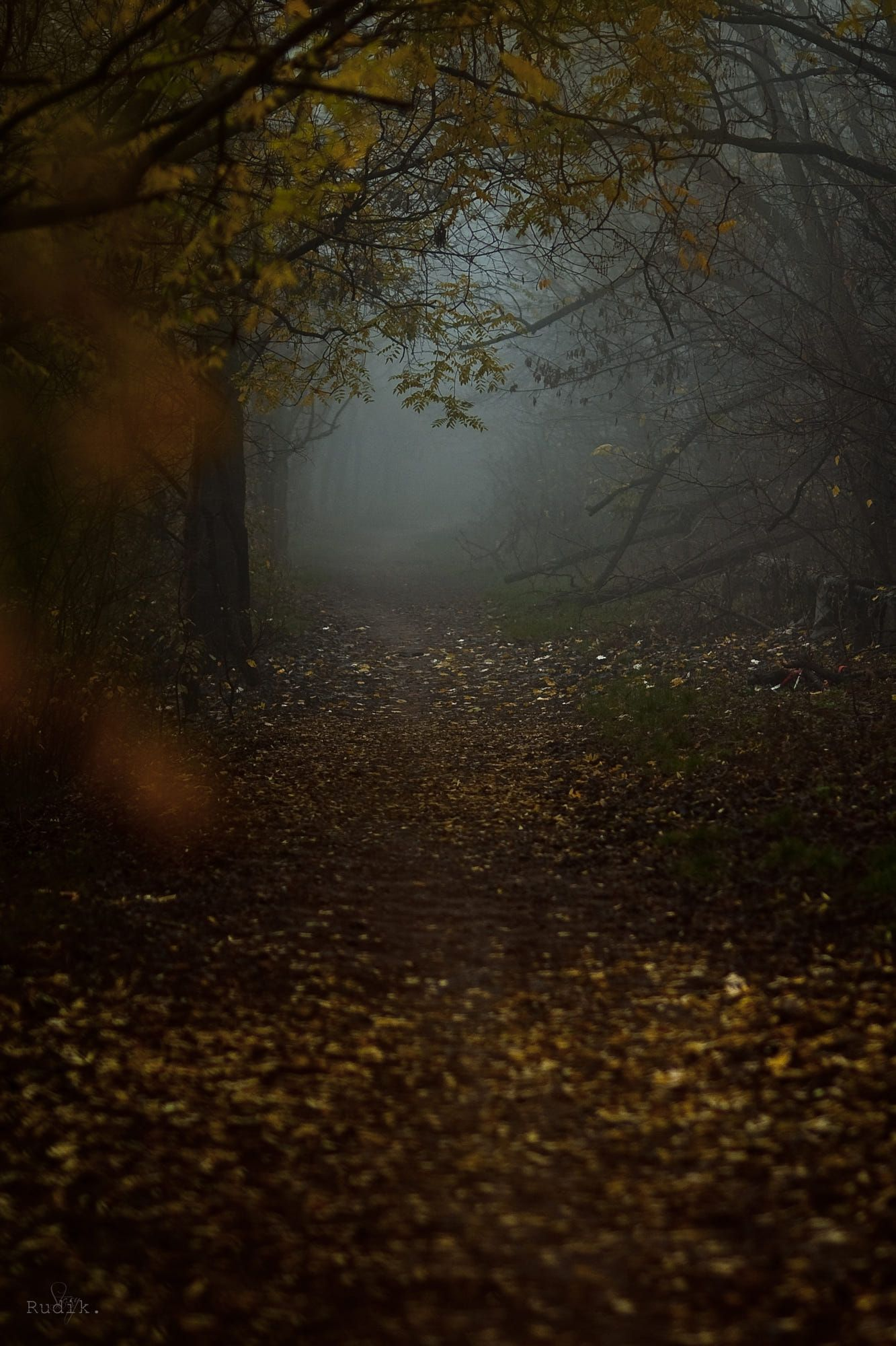 Darkness within by Stasy Kiktenko