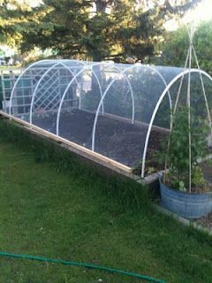 Exceptional Wire Garden Covers: Protection Against Hail (and Perhaps Deer!)