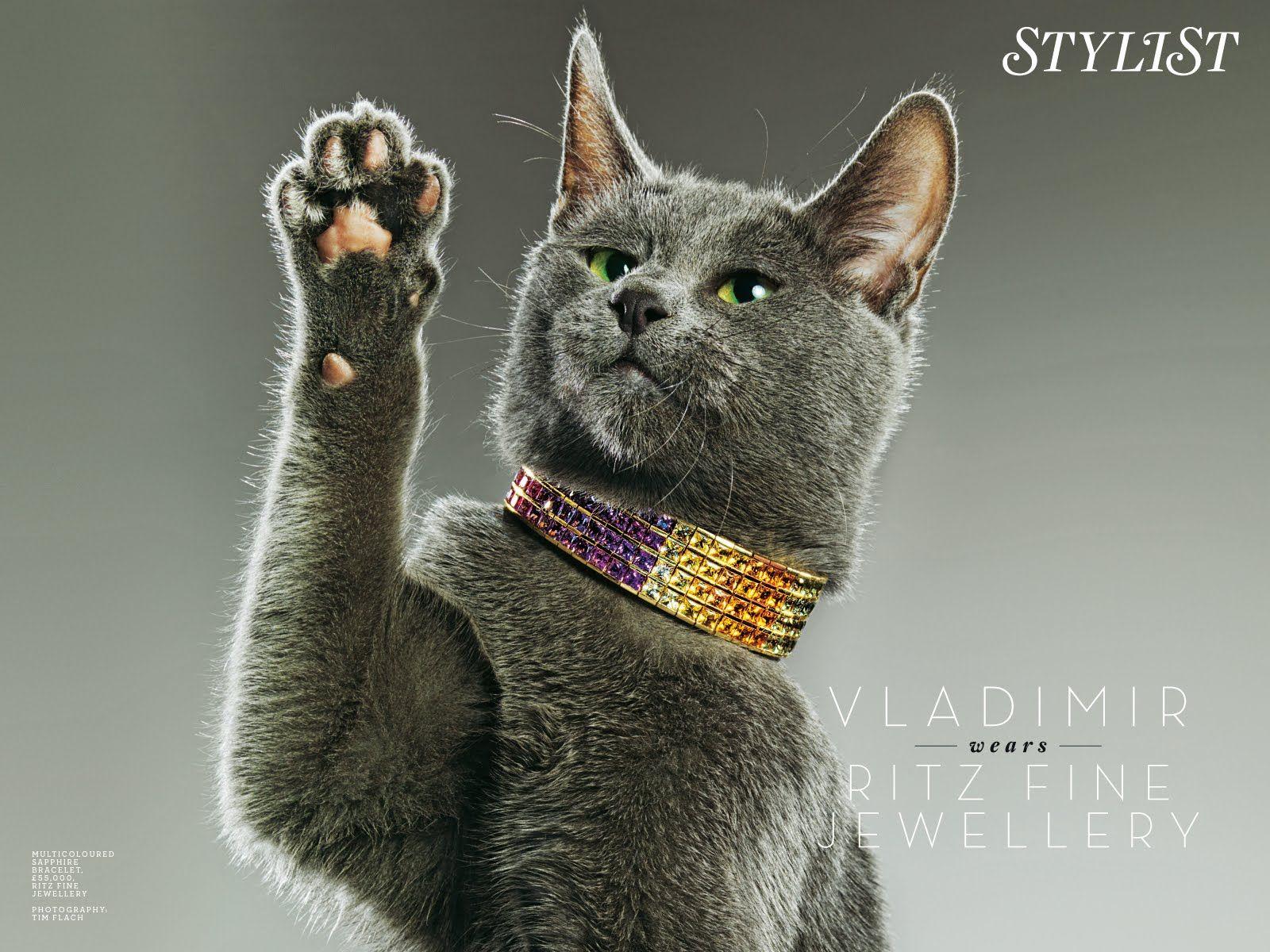 Valdimir in Ritz fine jewelery