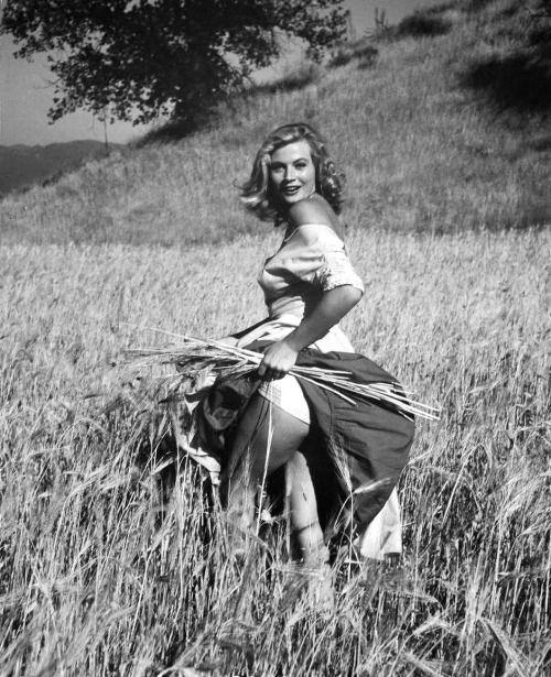 Anita Ekberg 1955 By André De Dienes Anita Desnuda Anita