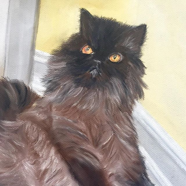 "This beautiful Persian is sitting in a relaxed ""person"" position.😉🎨🐾  #  #  #  #persiancat #brownpersian #persian_cat #persiankitten #persiancatsofinstagram #persiancat_feature #persiancatlovers #persiancatlover #catpainting #catartist #felines"