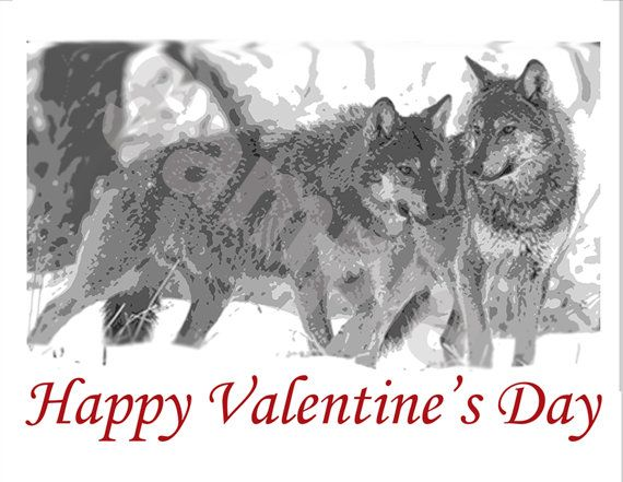 Wolves Valentines Day Card Wolves Are A Wonderful Symbol Of Love As