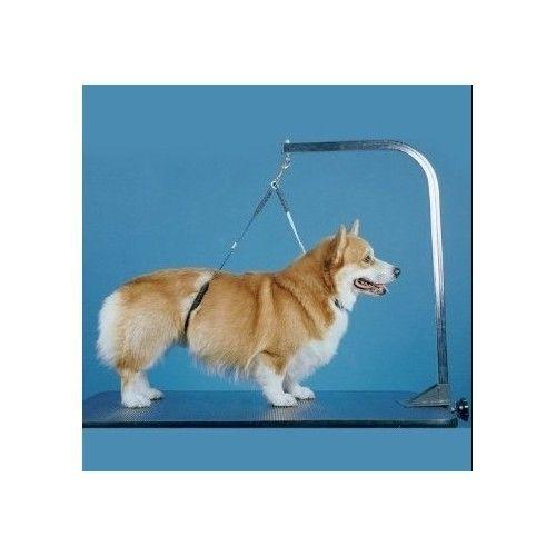 Pet Grooming Loop No Sit Haunch Holder Grooming Dog Restraint New