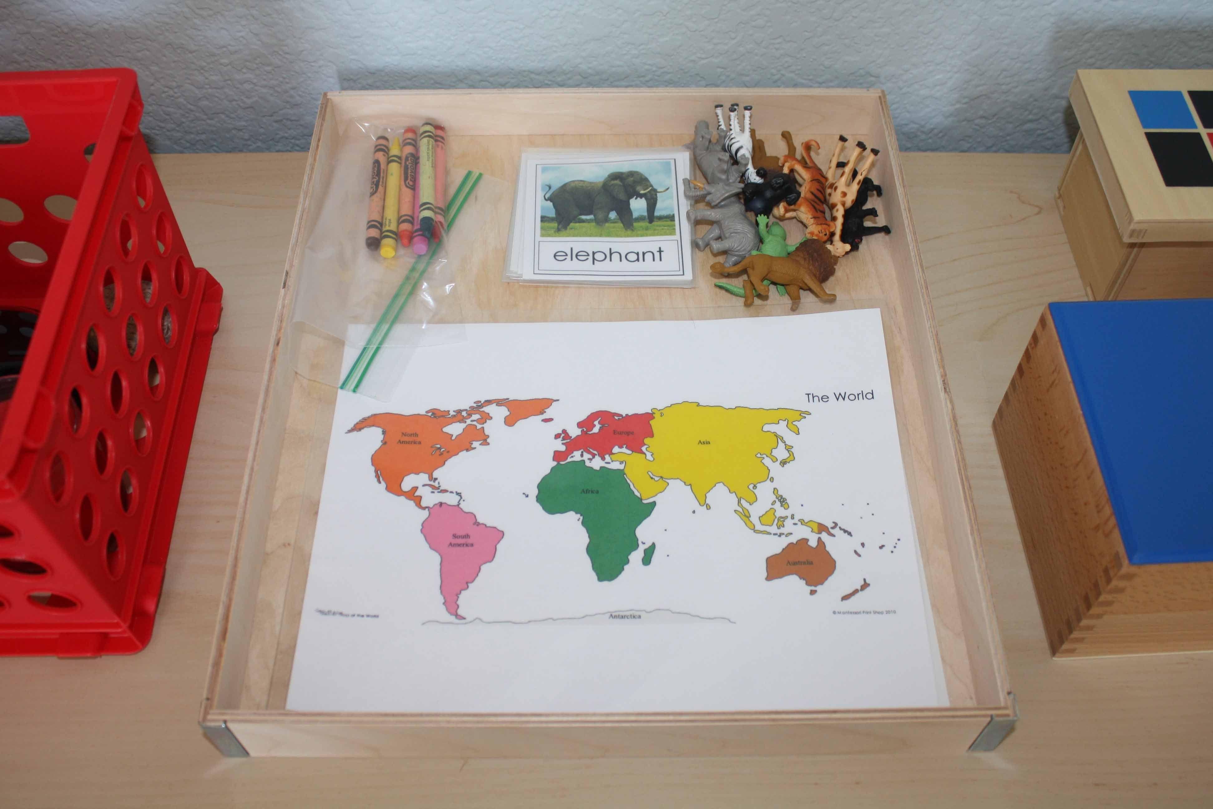 Montessori Monday A Montessori Inspired Zoo Animal Unit