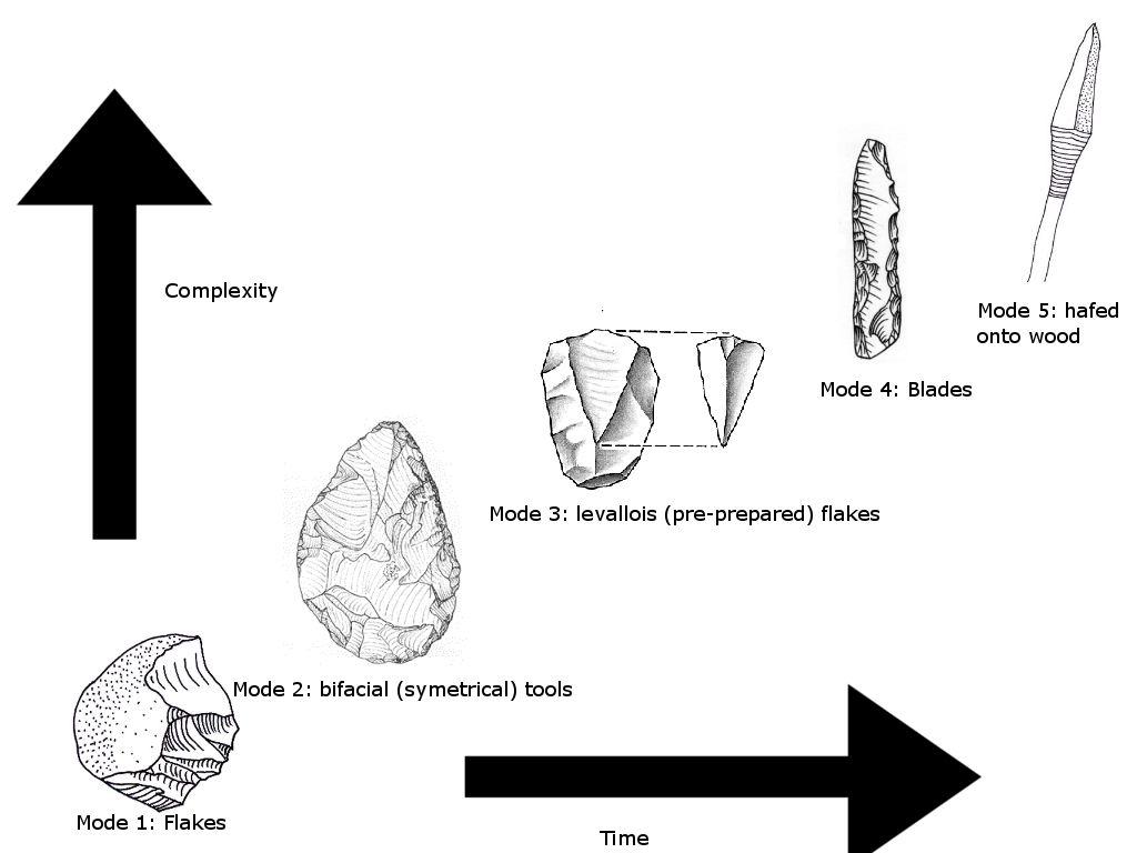 Human Tools Evolution