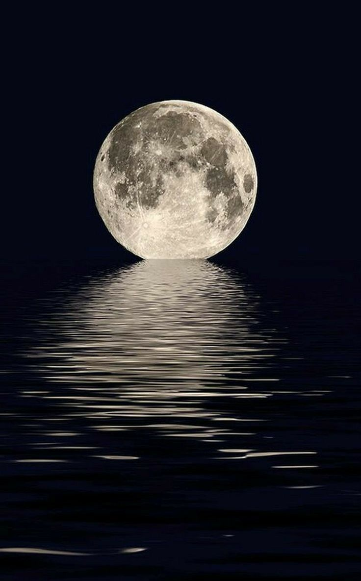 Pin by lizjimdjulio on man in the moon moon on the