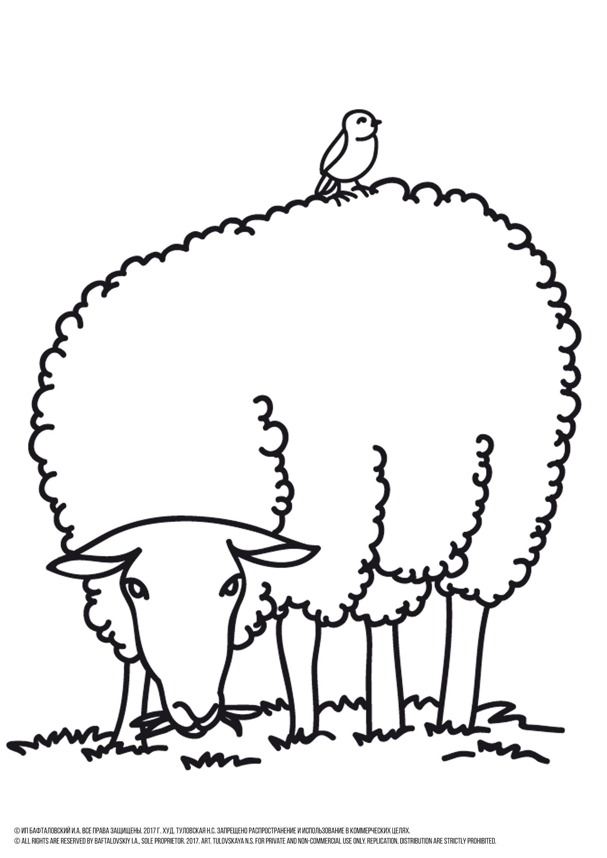 Sheep Coloring Page Printable Animal Coloring Pages Farm Etsy Animal Coloring Pages Farm Coloring Pages Bird Coloring Pages