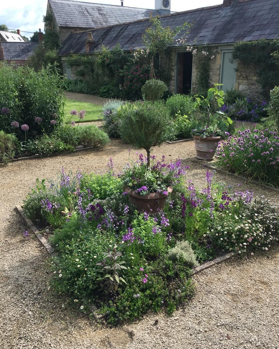 "Photo of Libby Russell on Instagram: ""Loving different Linaria this year #annuals #planting #batcombe #somerset"""